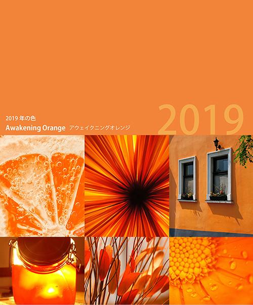 力強く鮮やかなオレンジの色が集められた画像